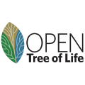 Open Tree - curation tool (dev) logo