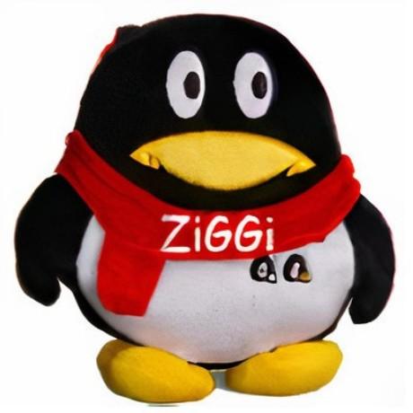 zimg-host
