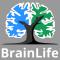 @brain-life