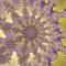 @fractal13