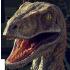 @mozilla-raptor