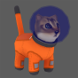 @cat-turner
