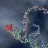 @BiologicalComputation