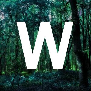 WildWildTeams