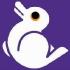 @duckietown-bunny