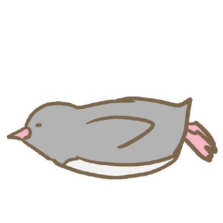 ginooosuke