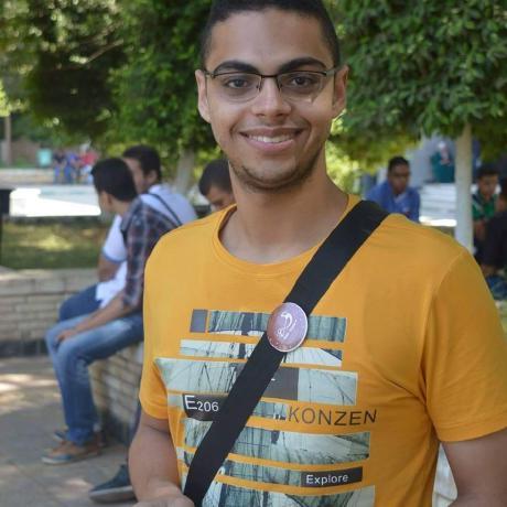 Mostafa Mohamed Mousa
