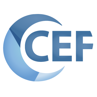 GitHub - chromiumembedded/cef-project: Chromium Embedded
