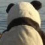 @ZhangHanDong