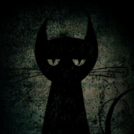 weixcat