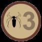 Nephila Komaci 3