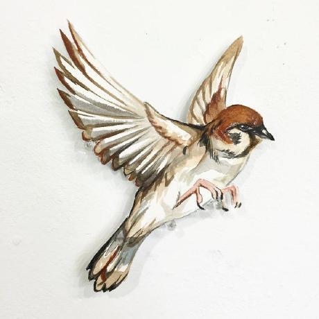 Sparrowing