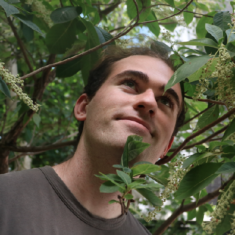 ColeGotelli's avatar