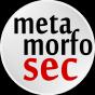 @metamorfosec