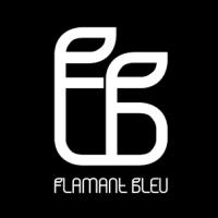 @flamant-bleu-studio