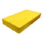 @sponge