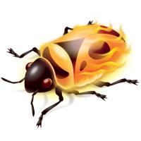 @firebug
