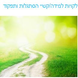 yoramlehman