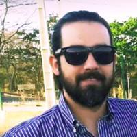 Rodrigo Pinheiro Campos, Web2py engineer and consultant