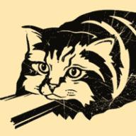 Rails Cat