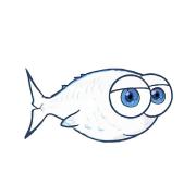 @k-fish