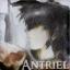 @Antriel