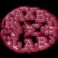 Dr. J.V. Haxby lab
