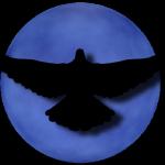@BlueMagnificent