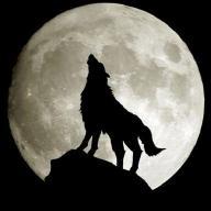 @wolfmanwoking