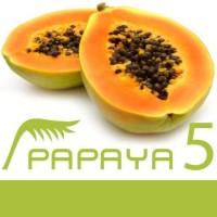 @papayaCMS