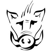 @boar