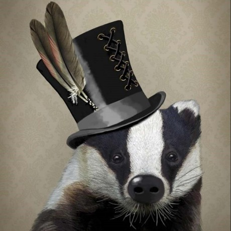 lazybadger