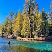 Improve logging · Issue #228 · koopjs/koop · GitHub